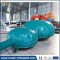 Hot crazy fun new design kids and adults cheap inflatable turtle bouncer for sale