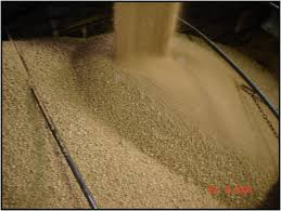 bulk soybean meal for sale