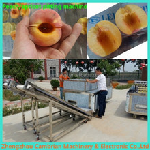 Stainless steel cherry destoning machine with lowest price