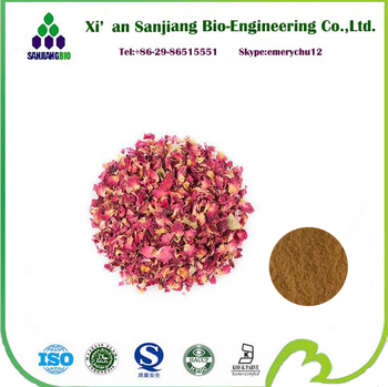 Natural Rose Flower Extract Powder Rose Extract Powder