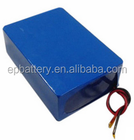 48V 50Ah LiFePO4 Battery for Electric go-kart/Car/Scooter