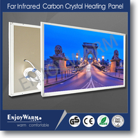 CE carbon crystal wall mounted infrared panel heater 360w/600w/720w/960w/1200w