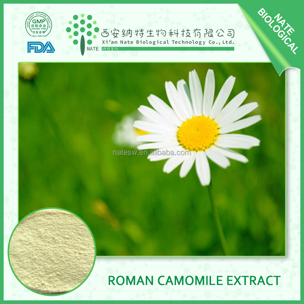 chinese supplier Chamomile extract 98% and Anthemis nobilis