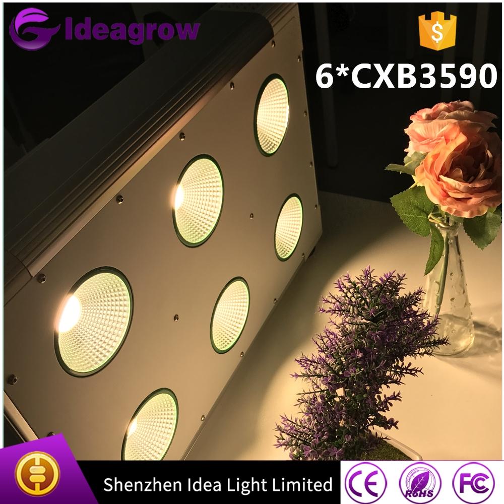 IDEA LIGHT Factory Wholesale price COB led CXB3590 CXB 3590 led grow light 3500K CD Bin 80 CRI 36V Available (9)