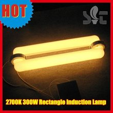 300W Induction Lamp Grow light Comparing Adjustable 300W LED light