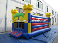 Inflatable Adult Bounce House