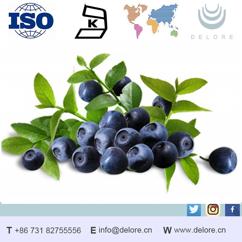 Produce Herbal Extract 25% Anthocyandins Blueberry Concentrate Powder