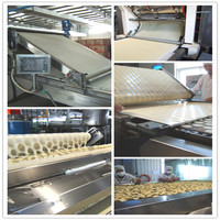 potato chips cleaning peeling and cutting machine