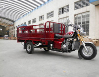 China Hot sale MTR 150cc/200cc/250cc water cooled cargo tricycle 3 wheel tricycle for Middle East Countries