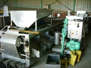 Used Olive Processing Machines