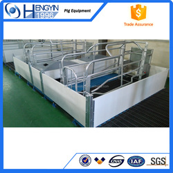 galvanized pigsytfence farrowing pens fatten cage made in China