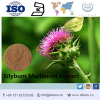 Milk Thistle P E Powder 80