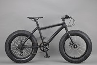 20 inch Fat bike snow bike