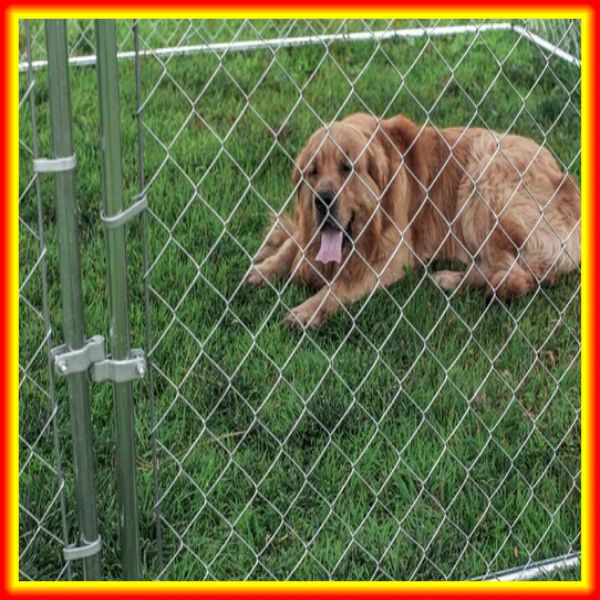 hot sales !!! security Chain link dog kennel fence /outdoor dog cage