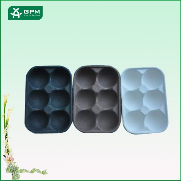 Custom 6 Compartments Fruit Container Packaging Tray