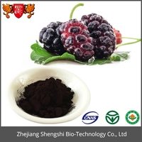 Hot sale Plant extract Mulberry fruit extract juice powder/Beverage pigment