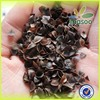 Used for pillow of buckwheat husk,China new crop buckwheat husk