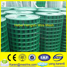 Galvanized 1/2 inch plastic coated welded wire mesh