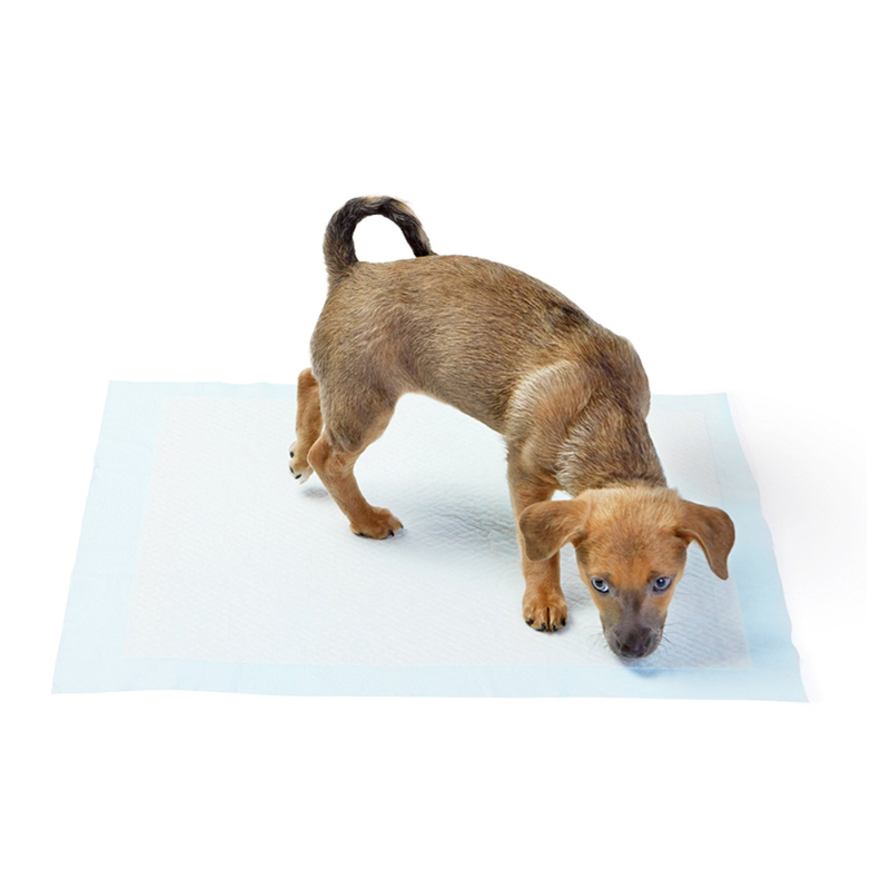 Pet Shop Wholesale Puppy Training Pad For Dog