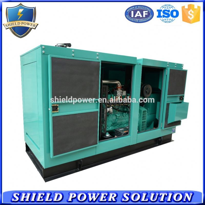 Electrical switch Diesel engine generator sale