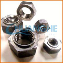 China wholesale high quality cash nut