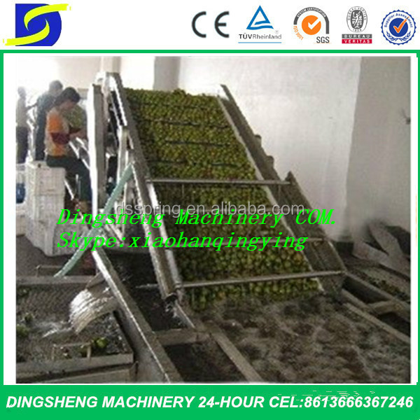 fruit sort and washing machine /vegetable washer industrial