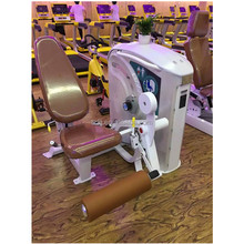 Hot Sale Leg Extension Gym Power Tower Fitness Equipment