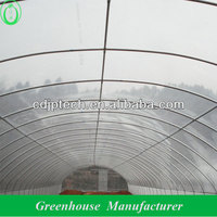 plastic film cheap greenhouses
