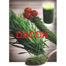 Wheat Grass Juice Powder (real manufacturer)