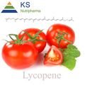 lycopene antioxidant tomato P.E/love apple extract