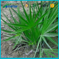 with Kosher, Halal, FDA registered pure saw palmetto oil powder bulk
