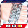 Strong Quality 2 Inch Concrete Common Steel nails