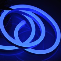 BLUE NEON LIGHT SIGN MATERIAL FOR AMERICAN