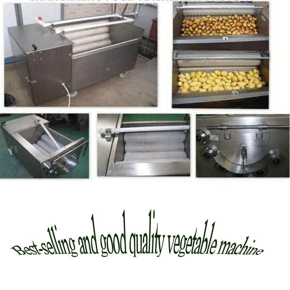 Hot sale India Australia Canada Pakistan Nepal material professional fruit and vegetable washer machine