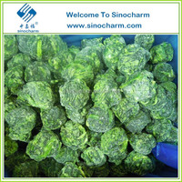 Good Price Frozen IQF Vegetable Spinach Ball