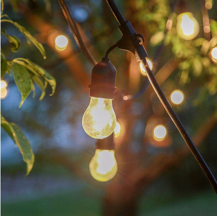 Christmas Party String Lights Outdoor Indoor Lighting with 15 Clear Ball Bulbs for Garden Backyard Holiday Bedroom
