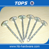 Low Price Galvanized Umbrella Roofing Nails