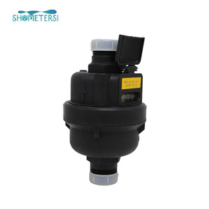 Volumetric Rotary Piston R160 Water Meter