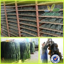 High quality frozen seasoning seaweed for sushi soup etc by pro of safe and healthy food