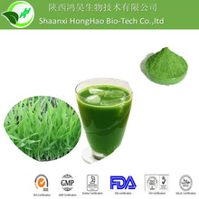 Buy Wheatgrass Powder ORGANIC at Real Foods, natural, healthy, bulk, value organic and wholefoods