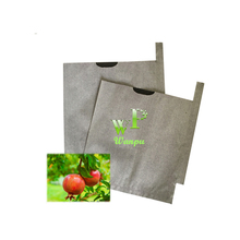 fruit pomegranate growing protection covering paper tree bag