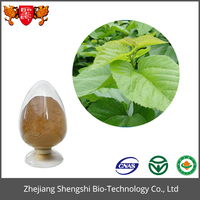 Fresh green mulberry leaf tea extract powder