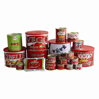 70G-4500G China Hot Sell Canned tomato paste, tomato ketchup