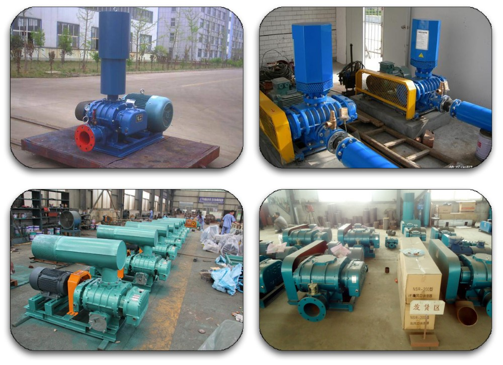 Made in China Industrial machinery high pressure small Roots Blower For Air Supply