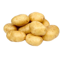 Wholesale bulk potato specification