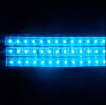 5050 smd led strip light single-sided illumination 12v/24v 5050 led strip light, SMD LED strip5050 flexible led backlight
