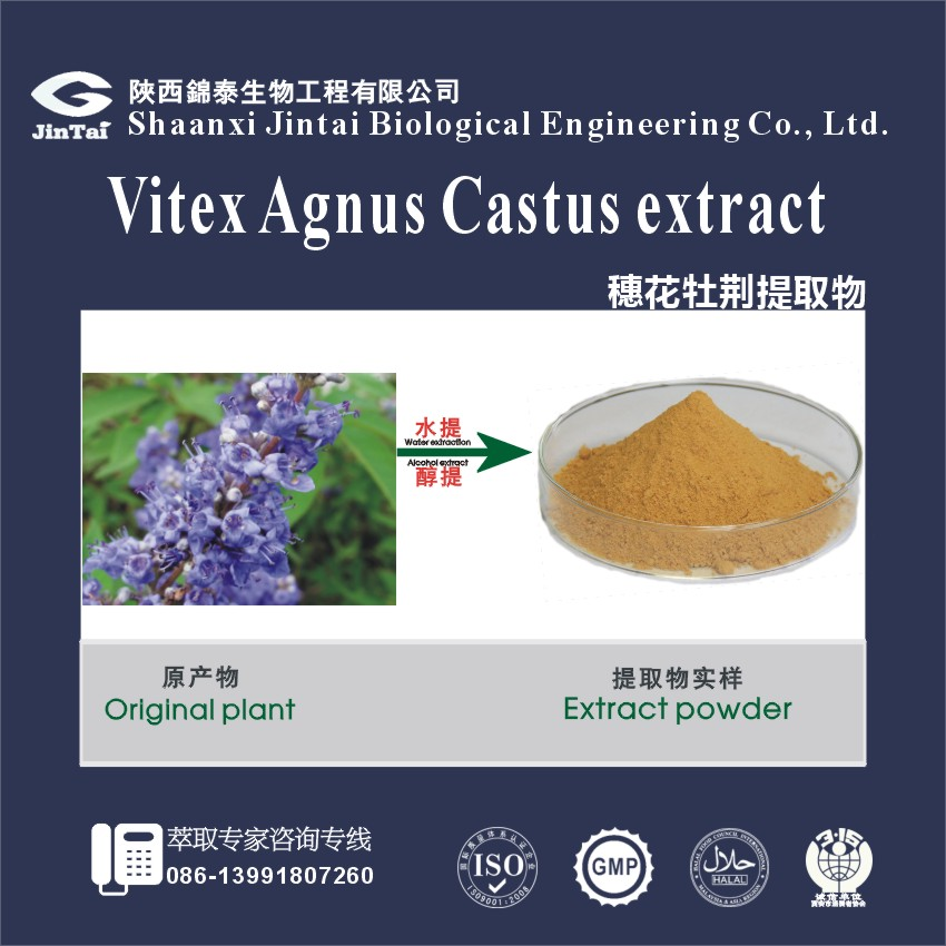 high quality natural 5% vitex agnus castus extract