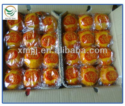 citrus fruits Orange Export Company