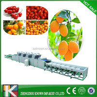 high capacity kiwi fruit/onion/potato grading machine for sale
