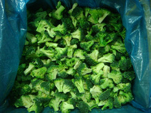 Frozen Broccoli Exporter